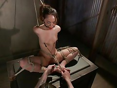 Kristina likes to sit comfortable and she was a fucking whore with no respect until this fellow putted his paws on her. Now she's all fastened up has clamps on her nipps that are pulling those small tits and a ball is used to gag her pretty mouth. Kristina sits there and gets whipped and punished, she deserves it.