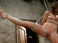 With weights added to her big nipples, sexually excited milf Mia Gold is tied up and has one leg in the air for a better twat domination. Having her face hole gagged, this playgirl can only moan. Her mistress sticks a big marital-device in that wet twat of hers and a vibrator on her clit to drive her crazy. Will this playgirl cum soon?