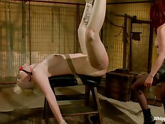 Blonde angel Sasha is being sexually used by her mistress Madeline. Madeline is a horny redhead with a passion for domination. She tied Sasha really hard and ball gagged her. Madeline then used her thong on dildo to fuck the golden-haired beauty unfathomable and hard from behind. only the sight of that sexy white ass makes her wild